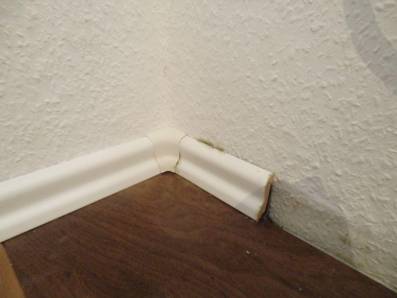 schimmelentferner wand schimmel entfernen mit ago. Black Bedroom Furniture Sets. Home Design Ideas